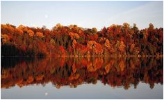 43 best fall foliage in upstate new york images upstate new york