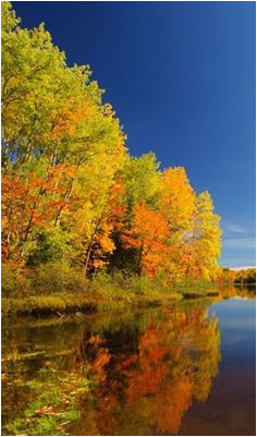 49 best wisconsin s fall color images wisconsin wisconsin fall