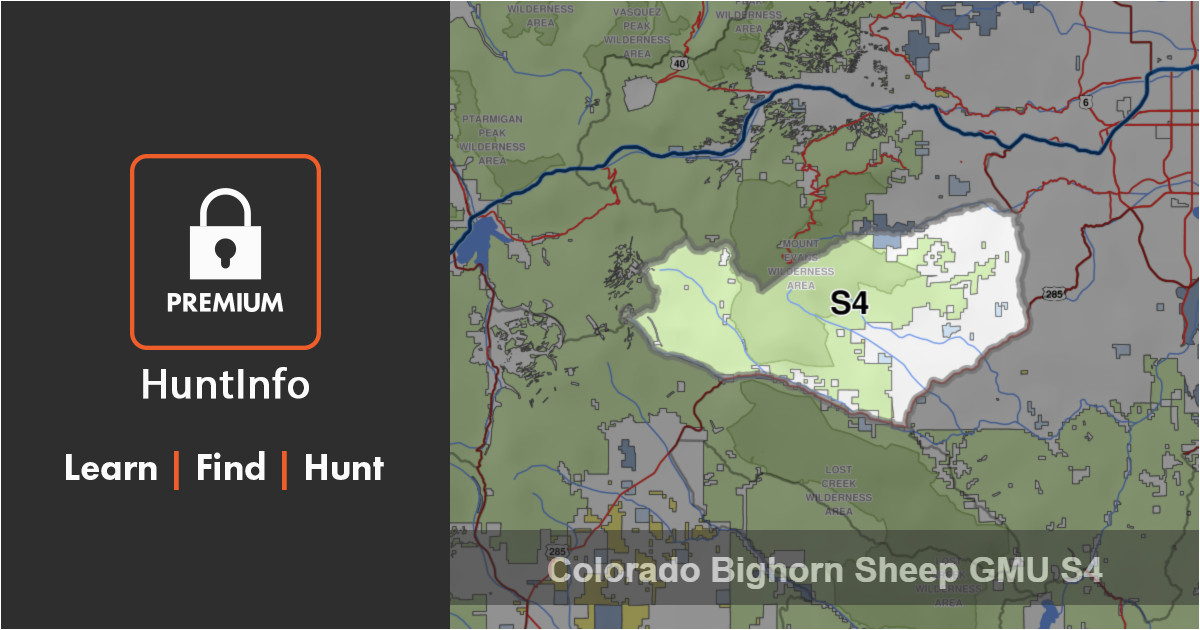 colorado bighorn sheep hunting unit s4 huntinfo