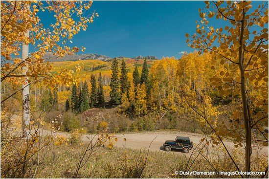 kebler pass fall colors picture of kebler pass crested butte