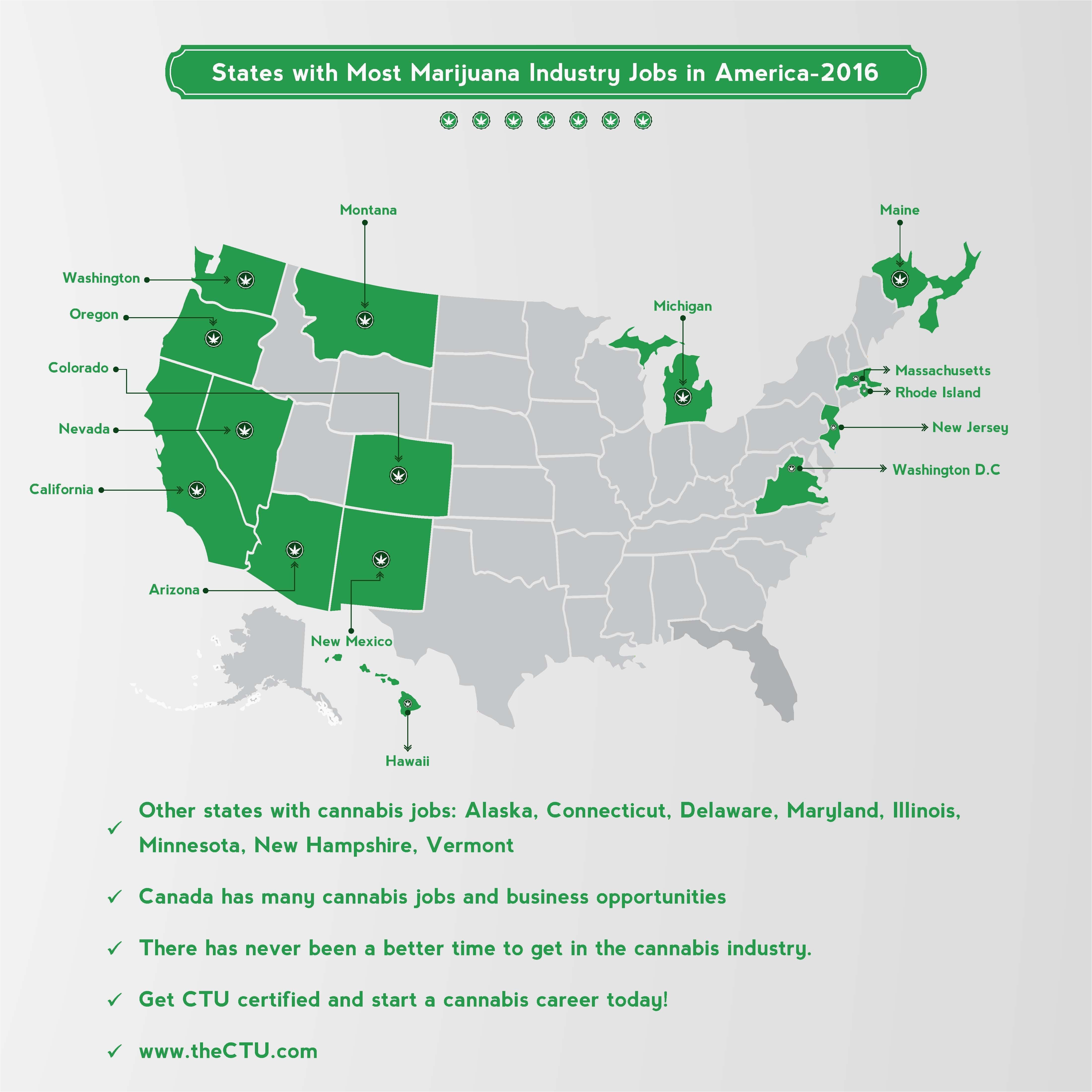 states with most cannabis jobs best cannabis links blogs about