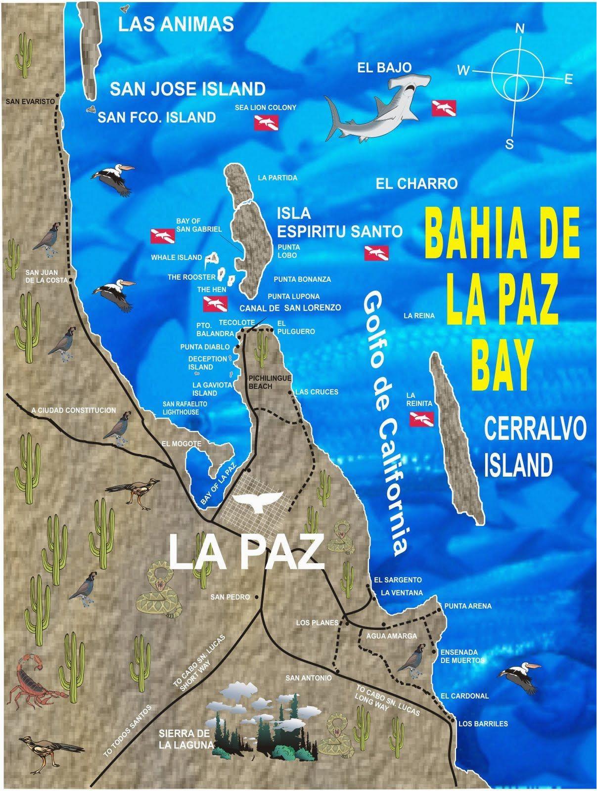 baja california peninsula map free printable la paz baja california