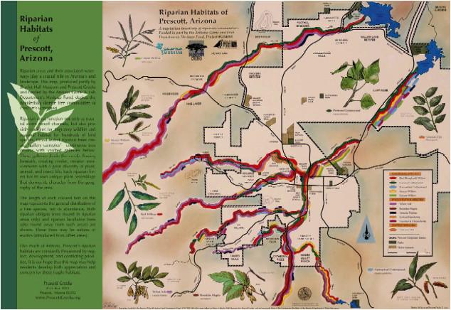 riparian habitats of prescott arizona map prescott creeks
