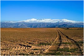 sierra nevada spain wikipedia