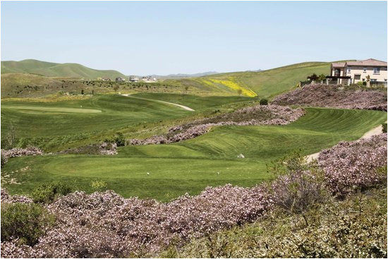 this golf course is always in great shape beautiful layout