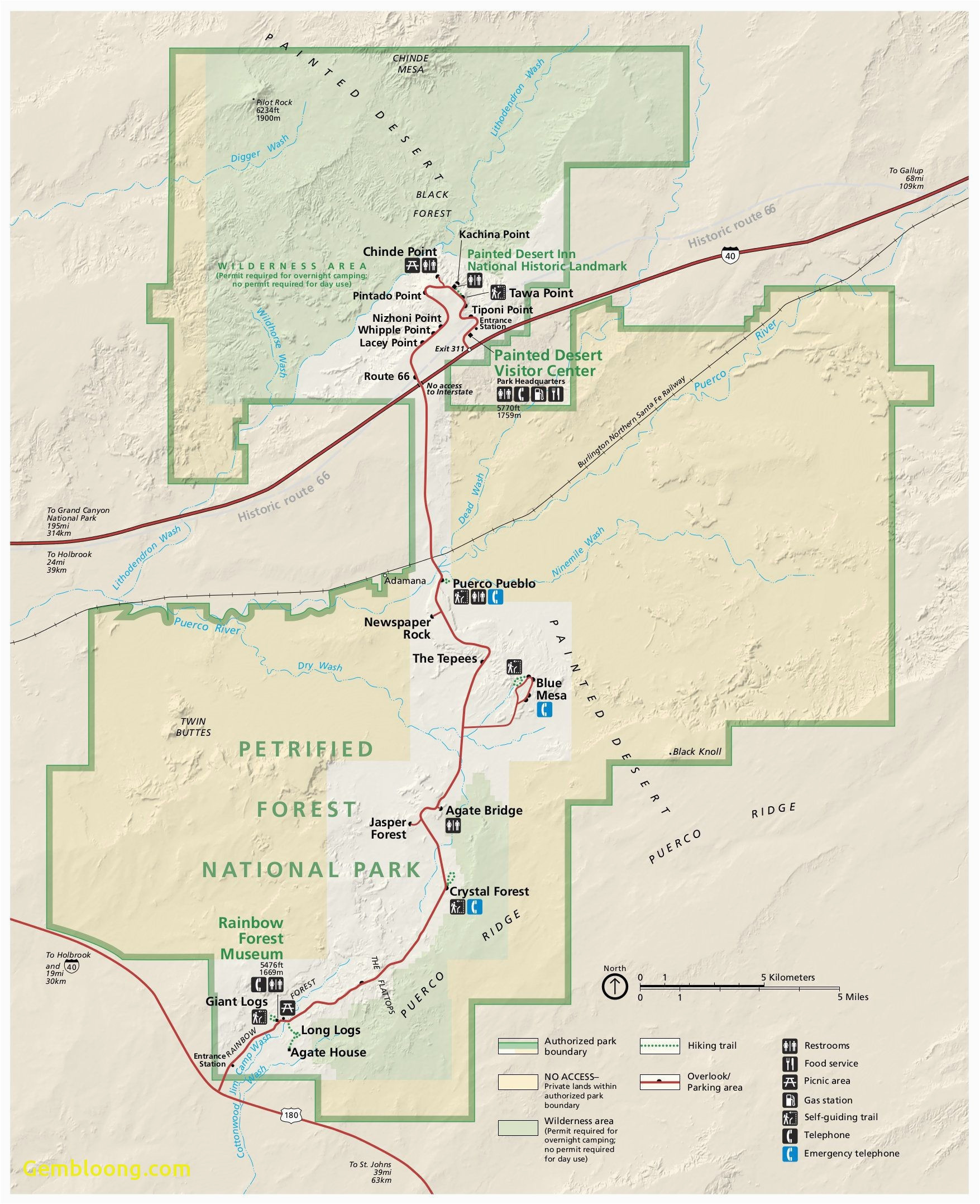 California National Forests Map on