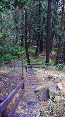 99 best idyllwild california images idyllwild california