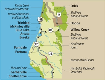 travel info for the redwood forests of california eureka and