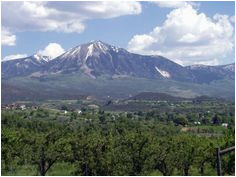 146 best paonia colorado images in 2019 all things paonia