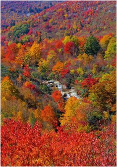 123 best fall beautiful season in north carolina images nature