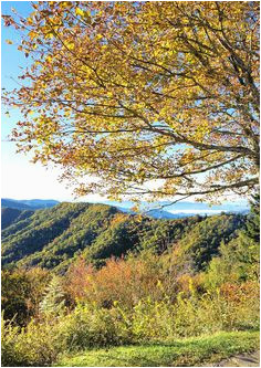 200 best fall color in nc mountains images nc mountains blue