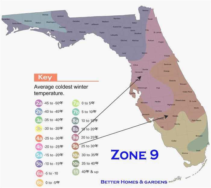 winter garden florida map maps directions