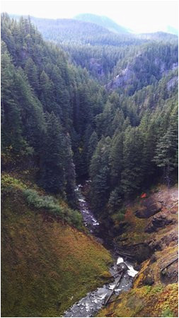 salt creek falls picture of salt creek falls oakridge tripadvisor