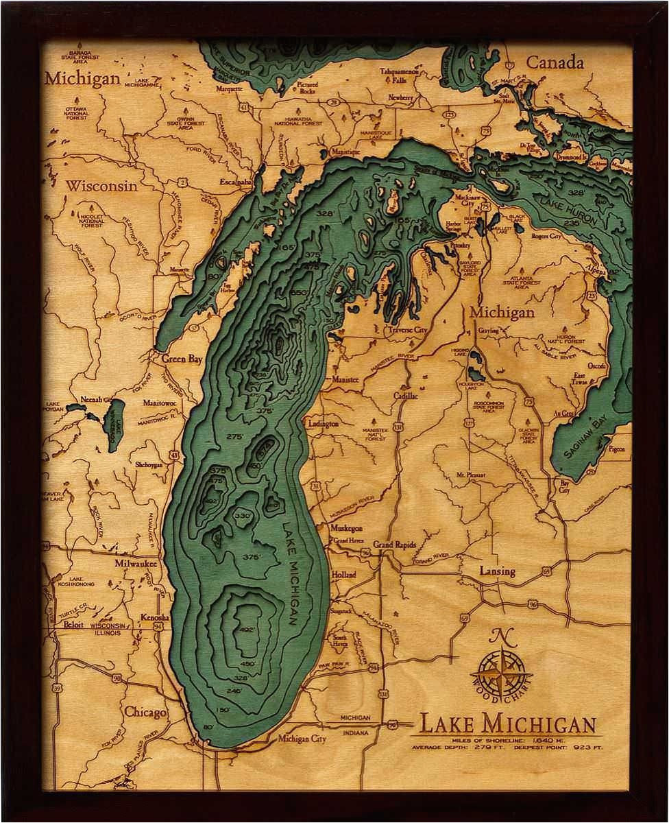 this detailed topographic map captures the stunning beauty of lake