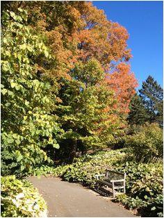 35 most inspiring minnesota landscape arboretum images autumn