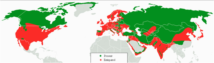 list of gray wolf populations by country wikipedia