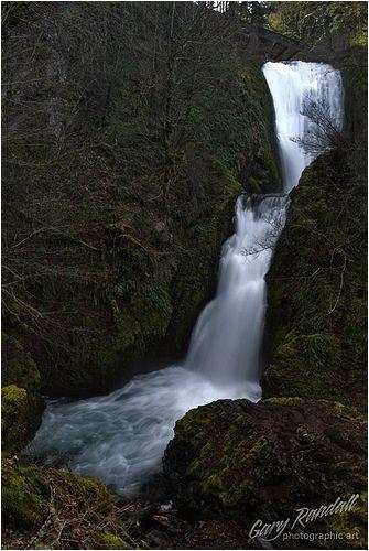 dsc 5090 2 nature ii pinterest columbia river gorge oregon