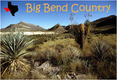 tpwd kids big bend country