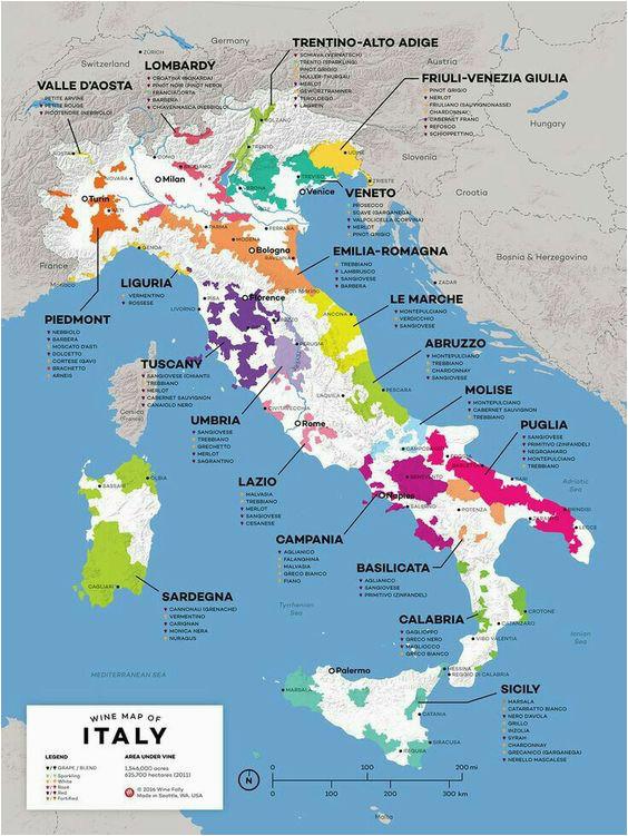 vinos italia wine italienischer wein weinkarte wein