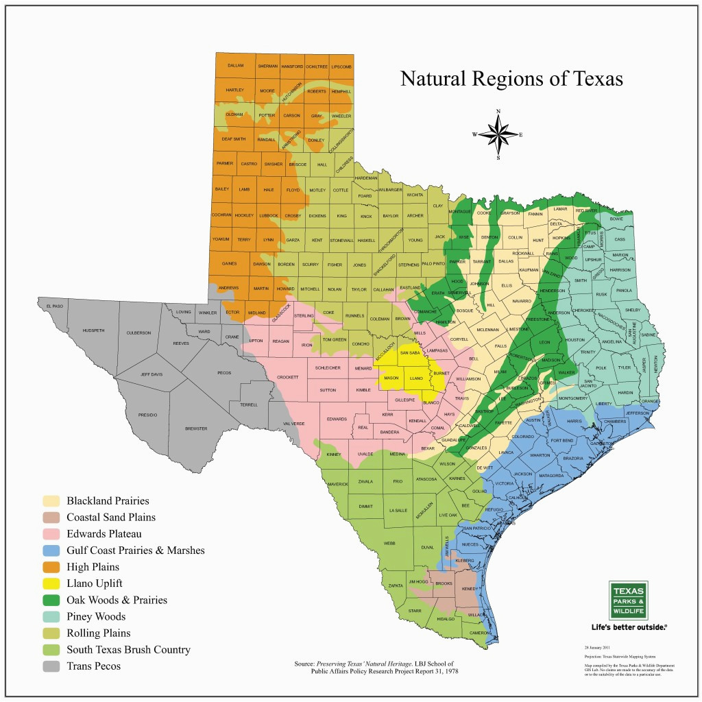 plains of texas map business ideas 2013