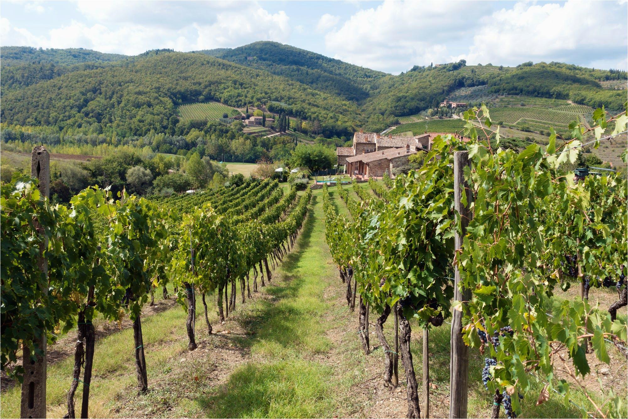chianti italy travel guide to chianti wine region in tuscany italy
