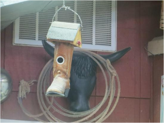 cute texas boot birdhouse picture of fish pond restaurant willis
