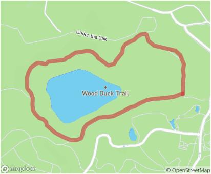 wood duck trail minnesota landscape arboretum trails com