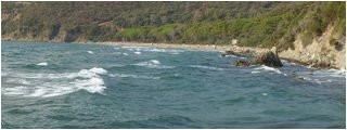 spiaggia di punta ala castiglione della pescaia aktualisiert