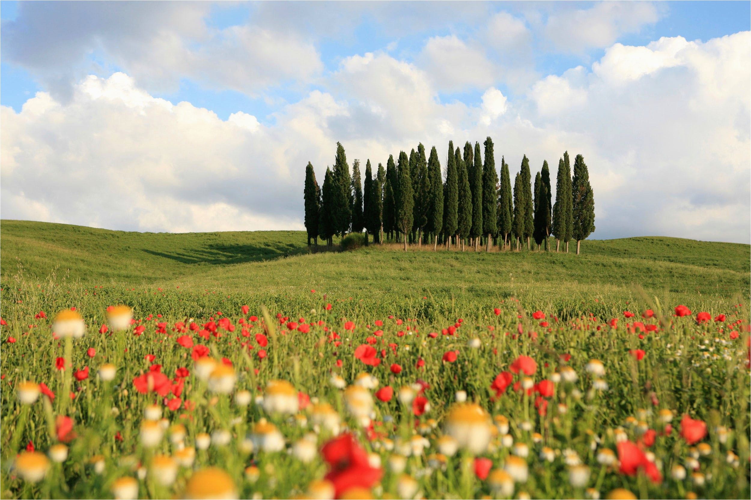 24 hours in val d orcia itinerary on what to see and do in a day in