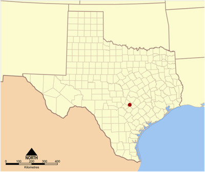 Map Of Texas Kyle.Where Is Kyle Texas On The Map Secretmuseum