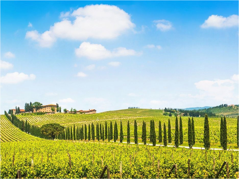 fun in tuscany chianti wine tour 7 5 hours tuscany in 2019