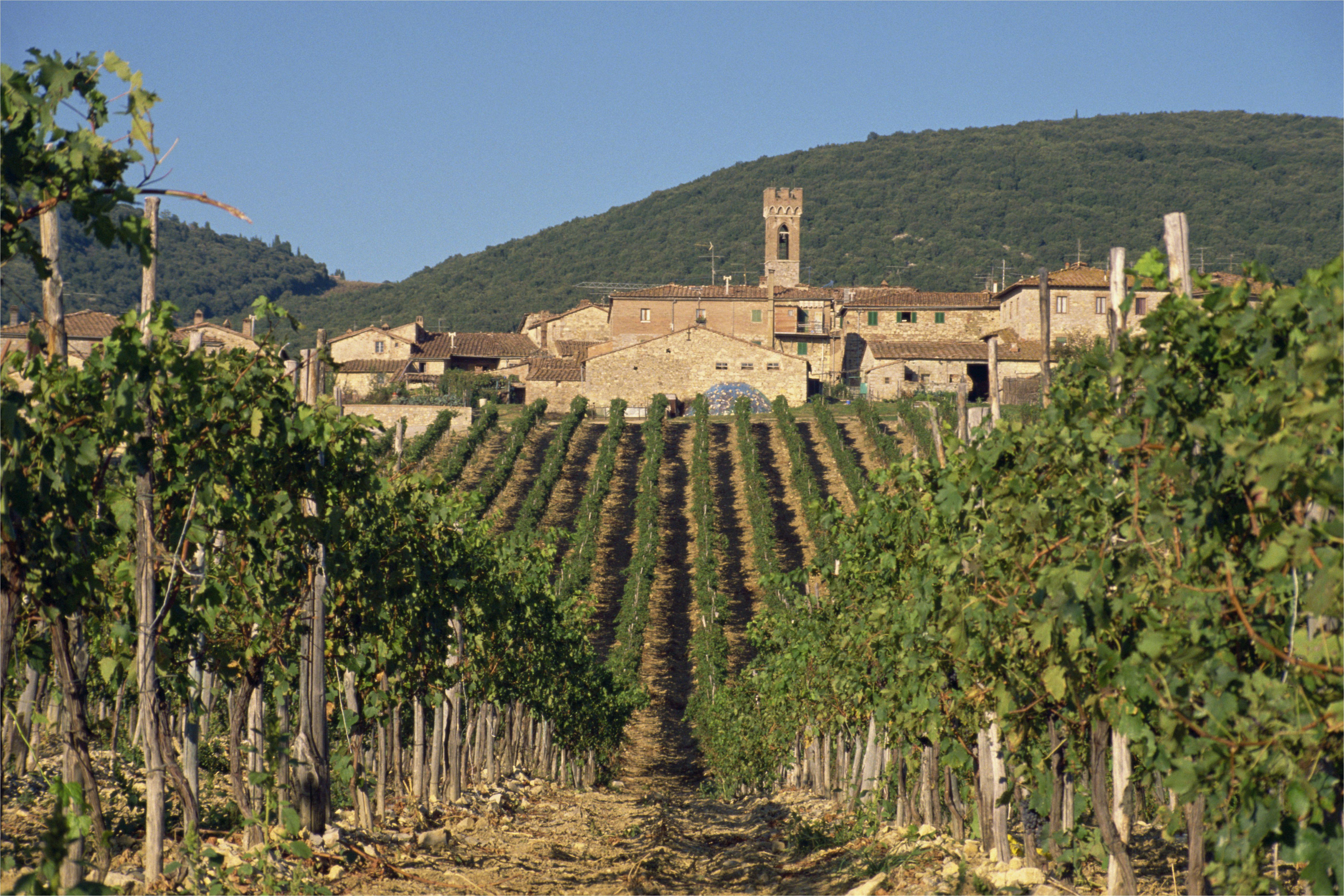 take a trip to tuscany s chianti classico wine region