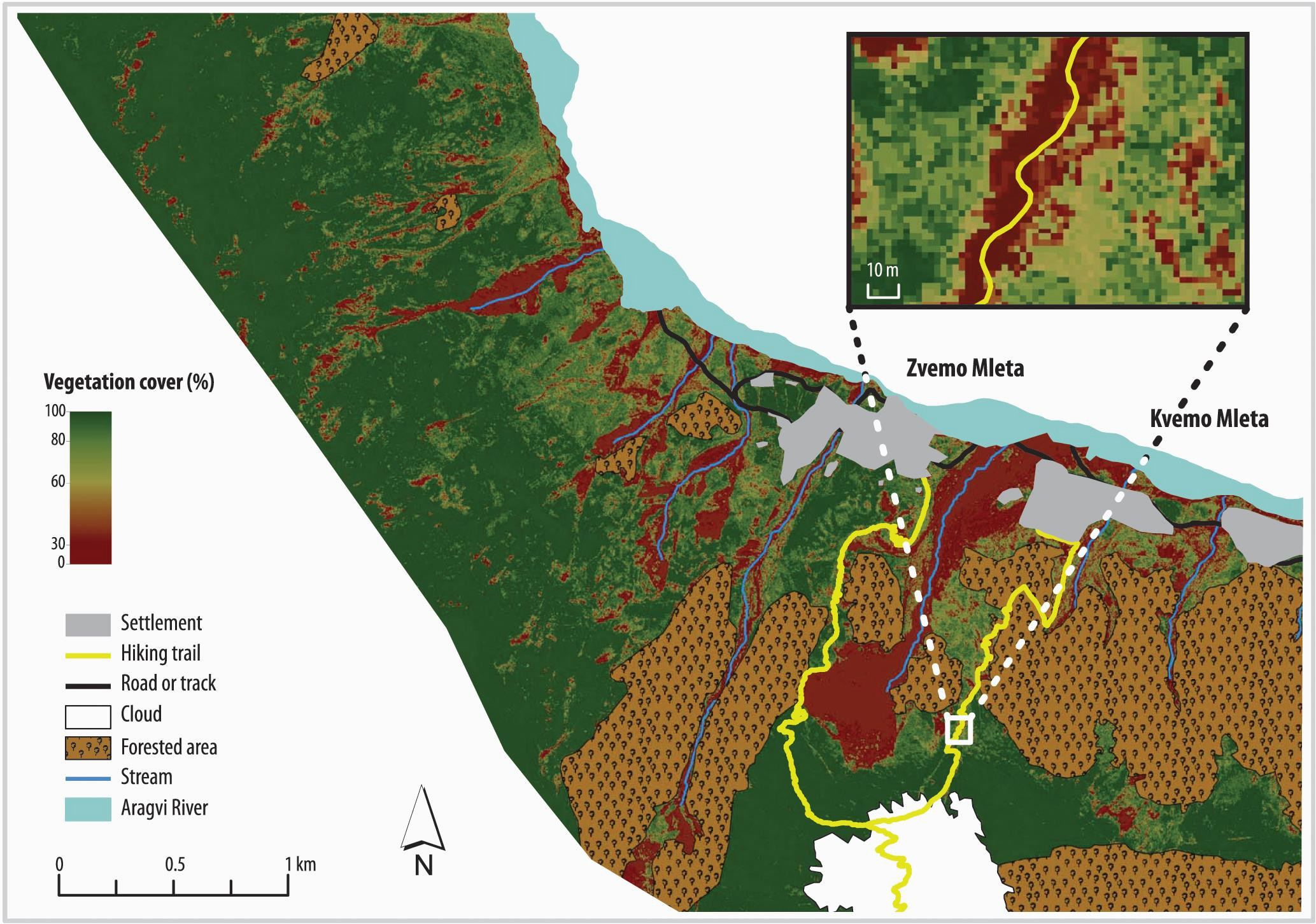 estimating vegetation cover from high resolution satellite