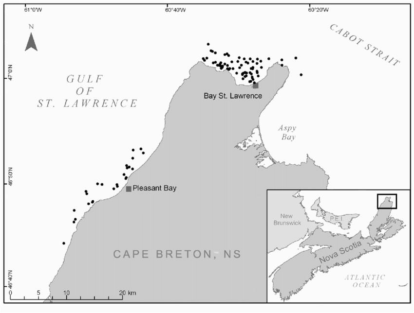 2 map of the northwest tip of cape breton island nova