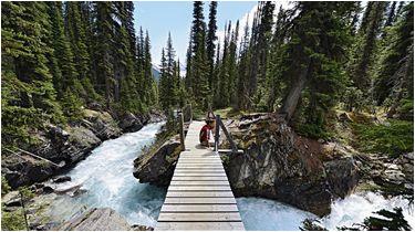 trekking im yoho nationalpark in kanada die besten tipps