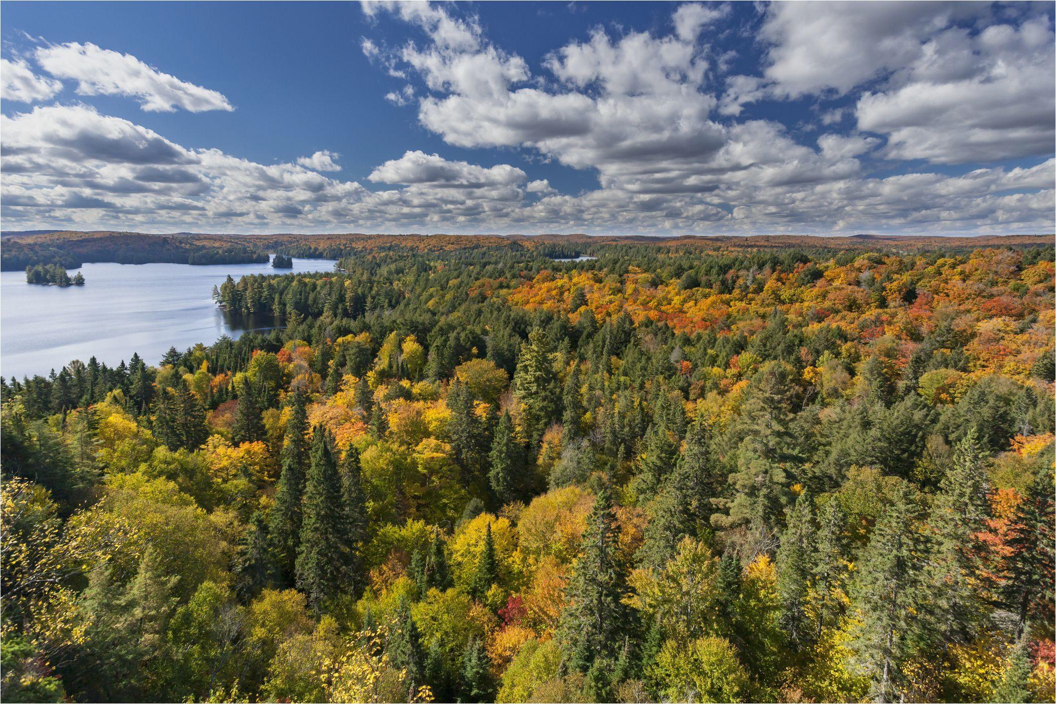 canada fall foliage reports