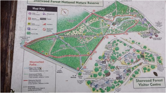 information board picture of sherwood forest visitor