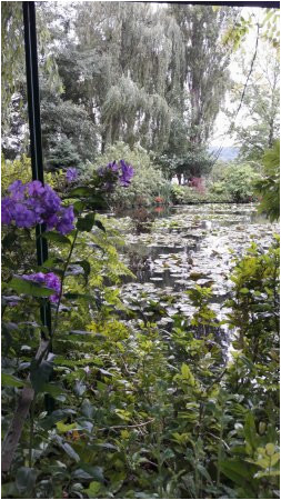 le jardin des nympheas picture of giverny eure tripadvisor