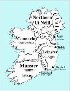 30 best irish dna leinster images in 2016 irish ireland