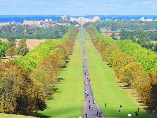 windsor great park 2019 all you need to know before you go with