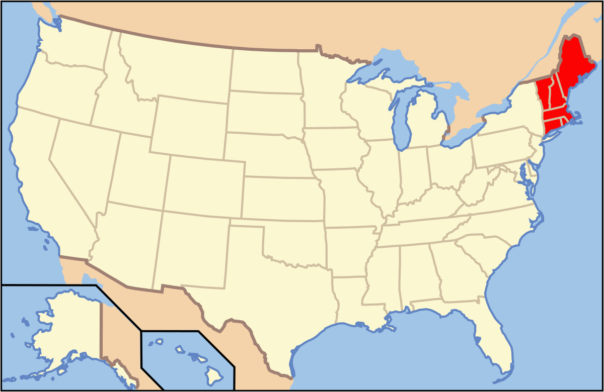 list of mammals of new england wikipedia