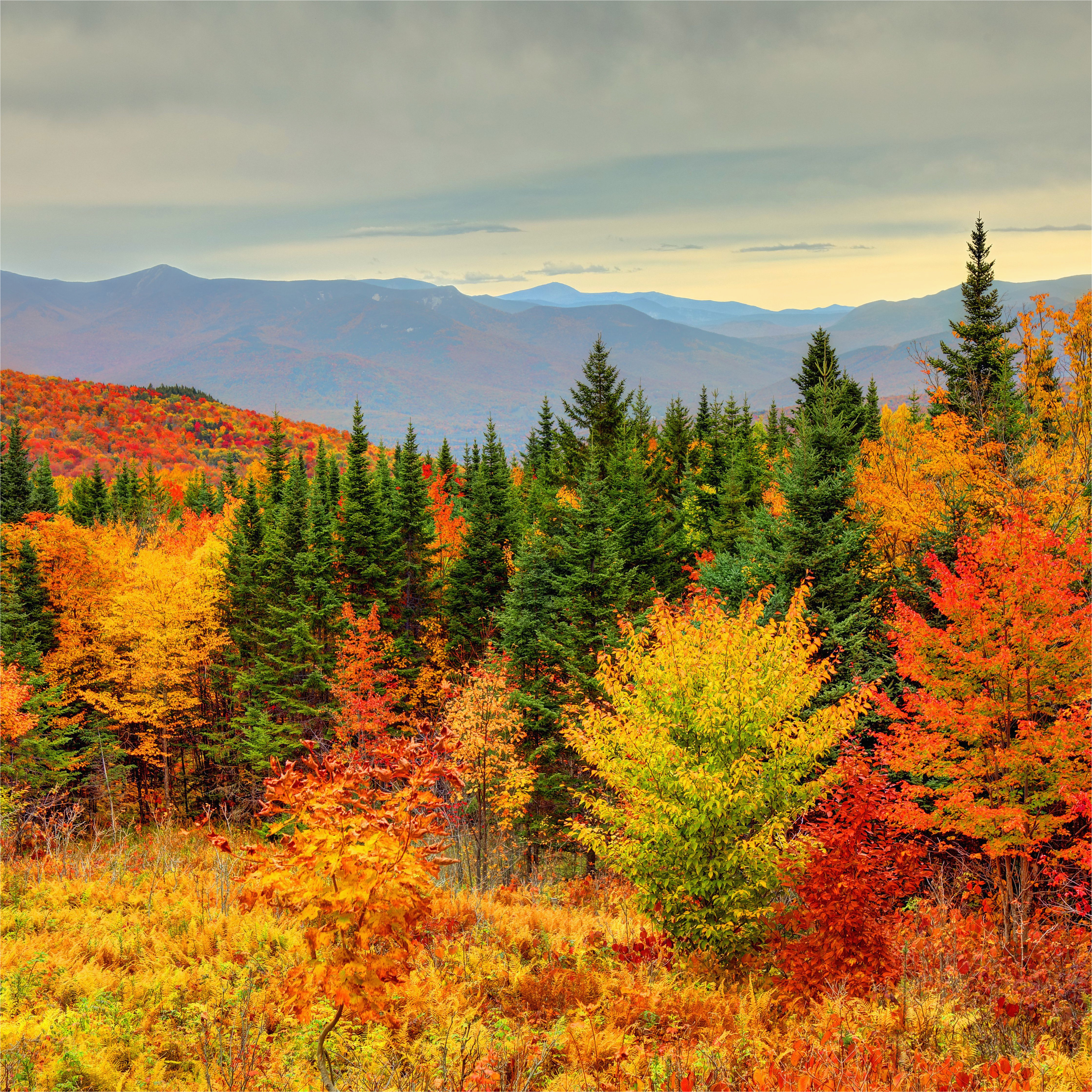 how to see new england fall foliage at its peak