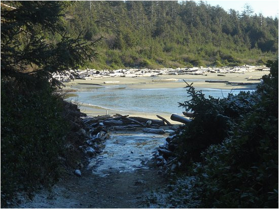 combers beach picture of long beach tofino tripadvisor