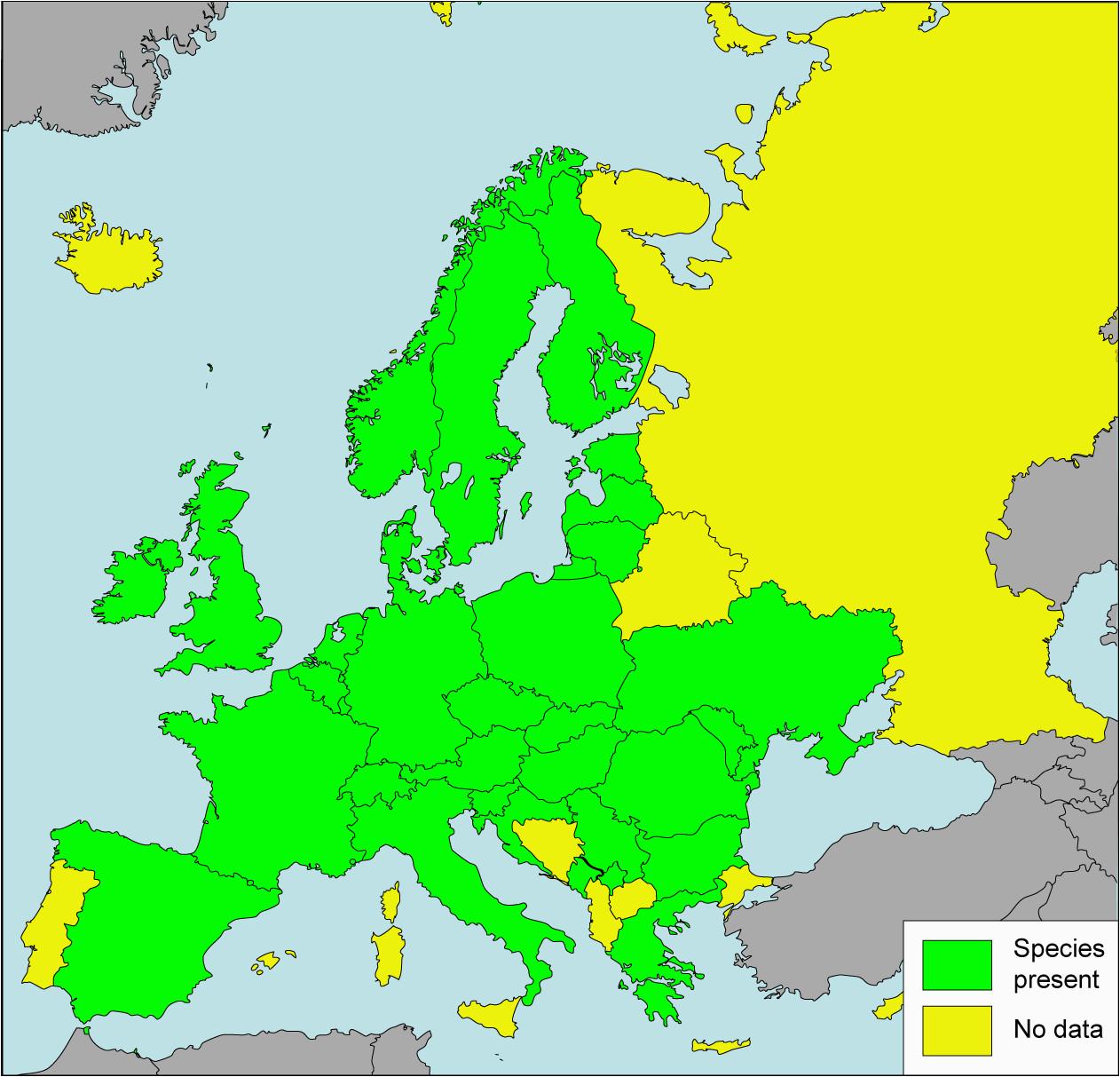 datei carychium tridentatum presence in european countries