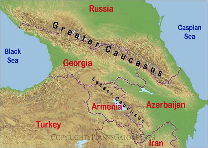 80 finicky caucasus mountains on map of asia