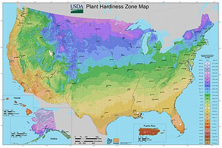 usda plant hardiness zone maps