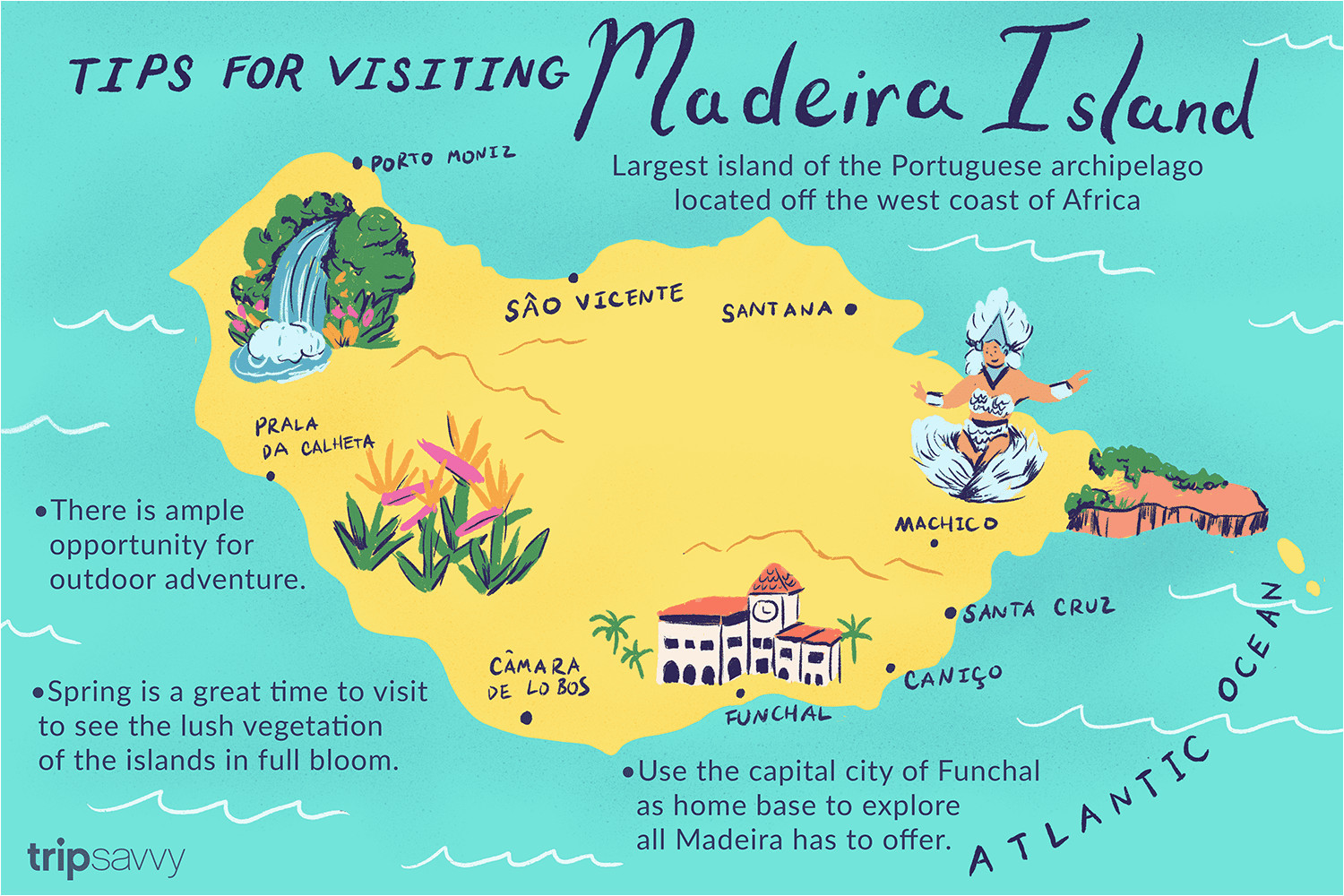 madeira islands map international map