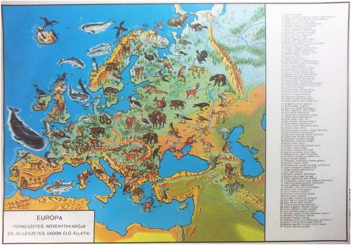 natural vegetation and characteristic wild animals of europe