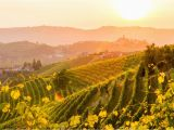 Barolo Region Italy Map Map Of Piemonte Italy Cities and Travel Guide