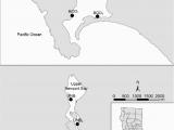 Bodega Bay California Map Map Showing Study Sites In Bodega Harbor Bod and Upper Newport Bay